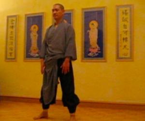 qi gong | meister yuan shan | Energieoase Langmair|2008